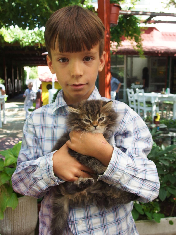 Малко момченце, Коте, Котка